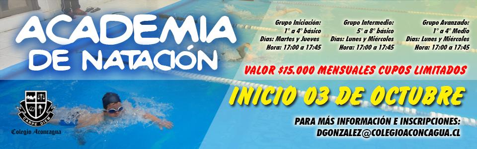banner-natacion