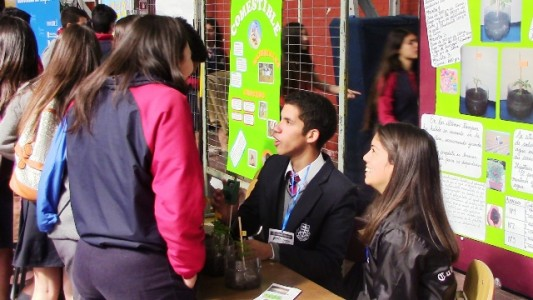 Los alumnos de ciencias explicándoles a sus compañeros su proyecto.